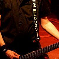 Cocotte Minute na Jamrocku 2013